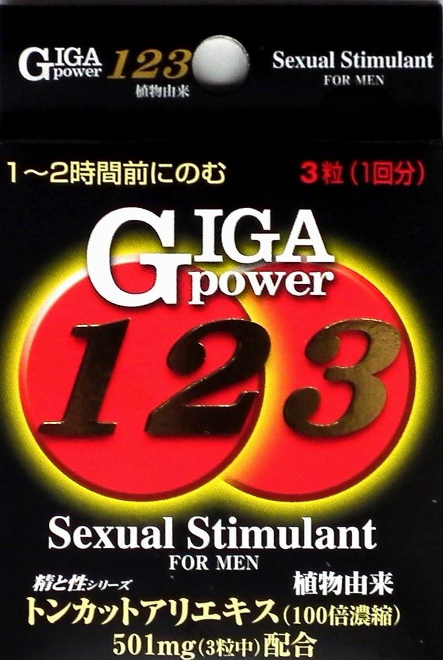 解く討論教育するメイクトモロー ギガパワー123 3粒