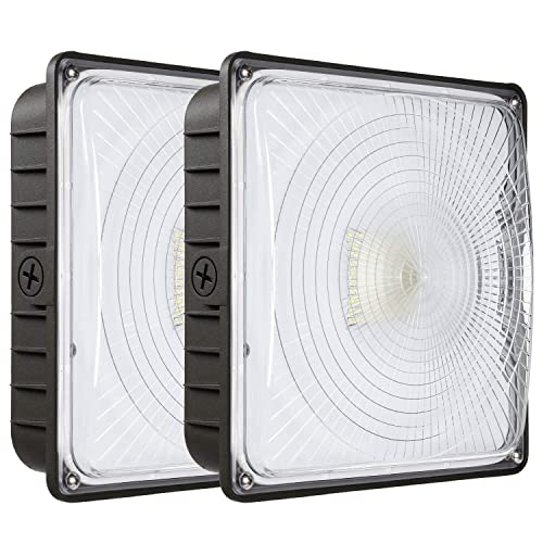 Lights for Carport: Amazon.com on carport home, carport roof pitch, car siding fence ideas, carport attached to front of house, drainage ideas, cable management ideas, carport apartment, carport designs, roof ideas,