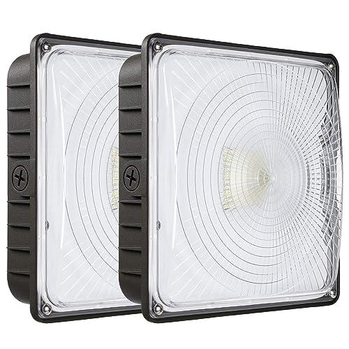 d594fc79623 LEONLITE Dimmable LED Canopy Light Fixture
