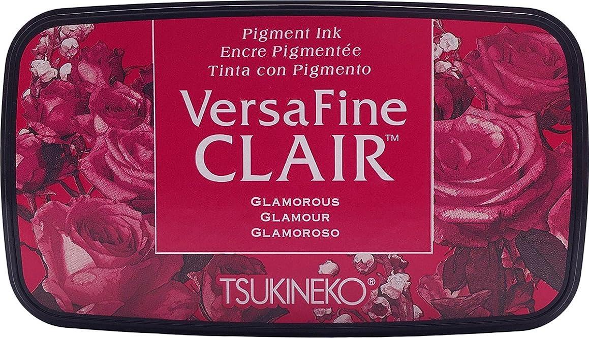 Tsukineko, VersaFine Clair, Full Size Ink Pad, Glamourous