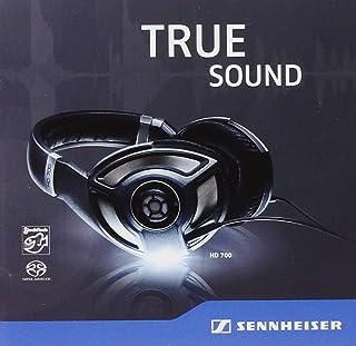 Sennheiser HD 700-True Sound