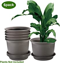 ZOUTOG Plant Pots, 9.5 Inch Flower Pots Outdoor, Large Plastic Planters with Drainage Hole and Tray, Pack of 6, Plants not Included