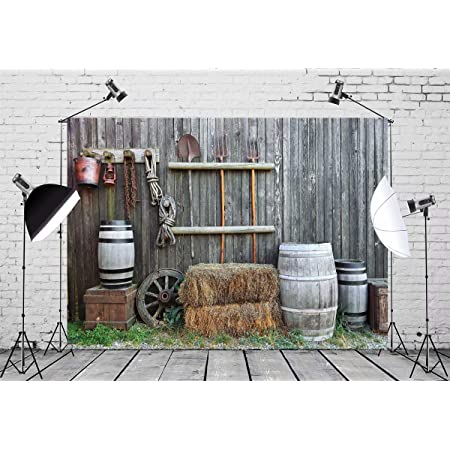 8x12 FT City Vinyl Photography Background Backdrops,Village Illustration with Country Houses in Sketch Style Cartoon Architecture Print Background for Photo Backdrop Studio Props Photo Backdrop Wall