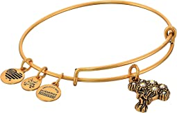 Alex and Ani - I Pick You Bangle