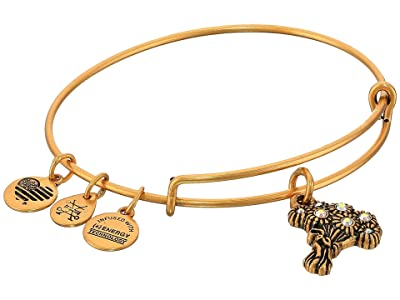 Alex and Ani I Pick You Bangle (Rafaelian Gold) Bracelet