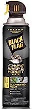 Black Flag Foaming Wasp & Hornet Killer Aerosol Spray, 14-Ounce