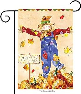 Pumpkin Patch Scarecrow - 12 Inch X 18 Inch Garden Size Decorative Flag