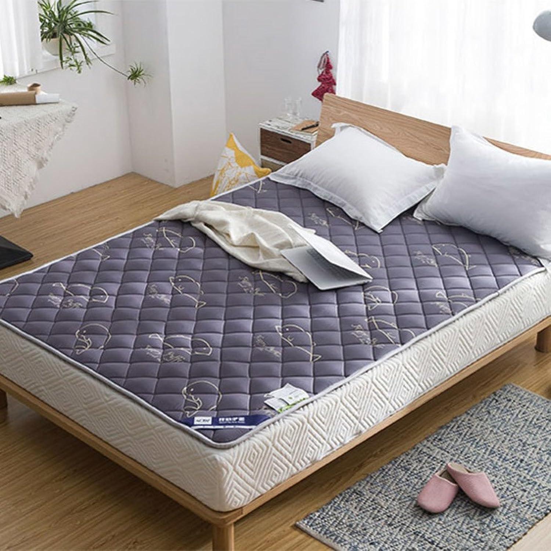 DULPLAY Non-Slip Foldable Breathable Mattress Topper,Thin Tatami Mattress Pads Cotton Anti-Bacteria Comfortable Bed pad Floor mats -C 120x200cm(47x79inch)