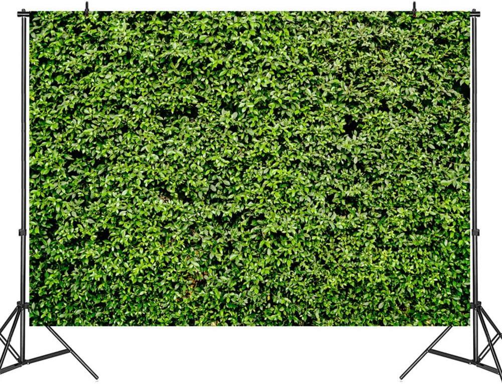 tela de fotograf/ía de fondo de vinilo decoraci/ón de pared y suelo dise/ño de hojas de c/ésped verde profesional CVERY Tela de fondo para fotograf/ía
