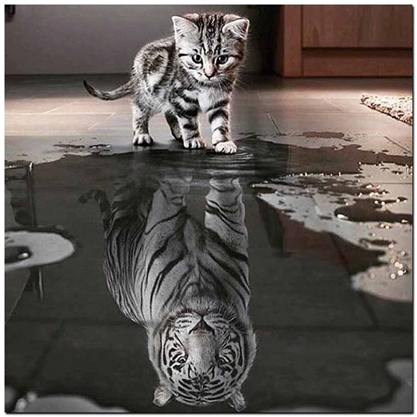21secret 5D Diamond Cats Tiger Reflection Animal Handmade Square Diy Painting Cross Stitch Home Decor Embroidery Kit