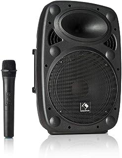 """auna Streetstar 10 mobiel PA-systeem muzieksysteem (10""""(25,5 cm) subwoofer, max. 400 watt, Bluetooth, USB-poort, SD, MP3, ..."""