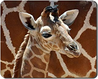 Little Giraffe Baby Animal Picture Game Office Mouse Pad (8.2x10.2inches)