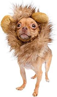 "Pet Krewe Dog Lion Mane Halloween Costume – Fits Neck Size 8""- 14""- Lion Mane for Small Dogs – Ideal for Halloween, Dog Bi..."