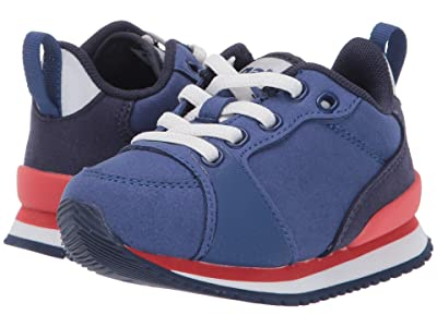 Native Kids Shoes Dartmouth (Toddler/Little Kid) (Marine Blue/Shell White/Coral Pink/Regatta Rubber) Boys Shoes