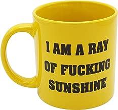 i am a ray of sunshine mug