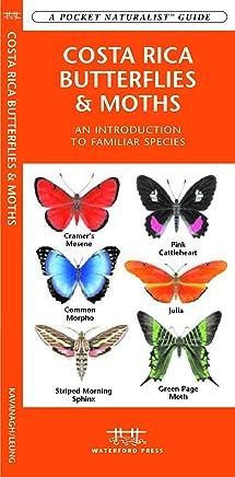 Costa Rica Butterflies & Moths: An Introduction to Familiar Species