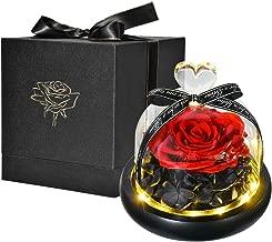 Flor conservada Rosa eterna Con luces LED y caja de regalo