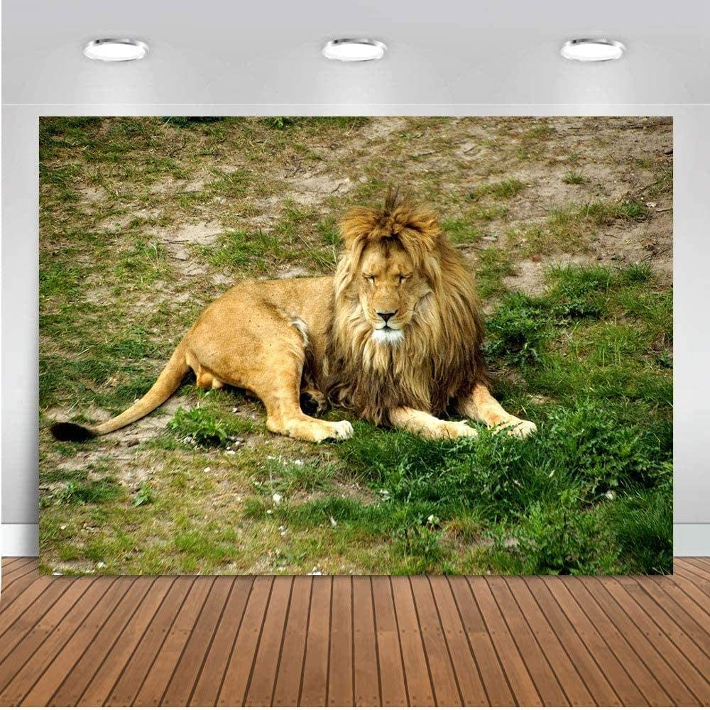 Zhy Cartoon Lion King Backdrop 7X5FT Africa Jungle Safari Wild Animals Green Prairie Background for Photography Vinyl Photo Booth Props GEEV434