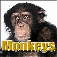 Best chimp sounds mp3 Reviews