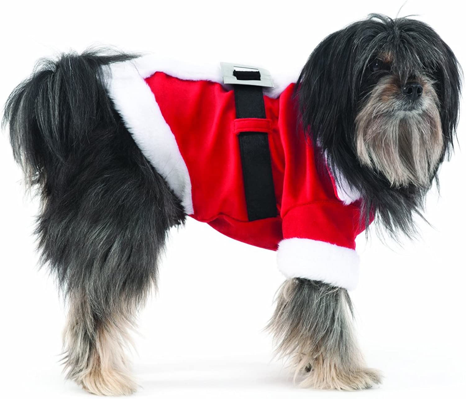 Fashion Pet Santa Claus Costume for Dogs, Small