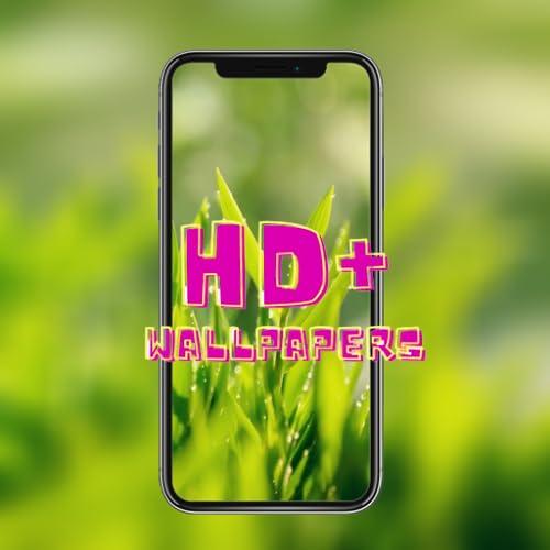 4K Green Leaf Wallpaper HD