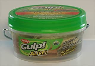 Berkley Gulp! Alive! Shrimp Assortment, 3in | 8cm, Soft Bait - 3in | 8cm
