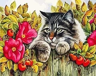 Marco Sleep Cat DIY Pintura Por N/úmeros Animales Pintado a mano Imagen Pintura Por N/úmeros Regalo Para Decoraci/ón Del Hogar Env/ío de la gota-60x80cm sin marcocuadros dormitorios,pintar por numeros