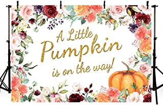 MEHOFOTO Little Pumpkin Girl Baby Shower Photography Backdrops Props Fall Autumn Red Pink Floral Princess Baby Shower Party Decoration Gold Photo Studio Booth Background Banner 7x5ft