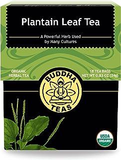 Organic Plantain Leaf, 18 Bleach-Free Tea Bags – Contains Essential Vitamins and Minerals, Antibacterial, Anti-inflammator...