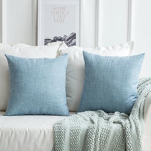 Miraculous Light Blue Throw Pillows Amazon Com Inzonedesignstudio Interior Chair Design Inzonedesignstudiocom