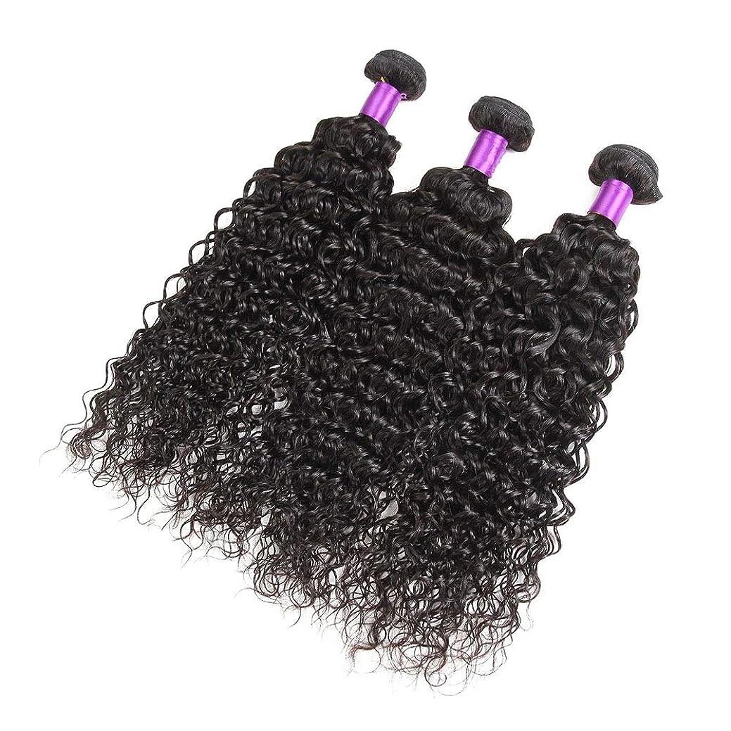離れた聖職者リスMayalina 人間の髪の毛のブラジルの髪の束6Aブラジルの巻き毛の毛髪の束延長フルヘッド100グラム/個女性の合成かつらレースのかつらロールプレイングかつら (色 : 黒, サイズ : 22 inch)