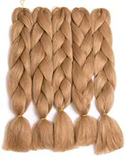 Lady Corner Braiding Hair 24inch Jumbo Braids High Temperature Fiber Synthetic Hair Extension 5pcs/Lot 100g/pc for Twist Braiding Hair (Strawberry Blonde)