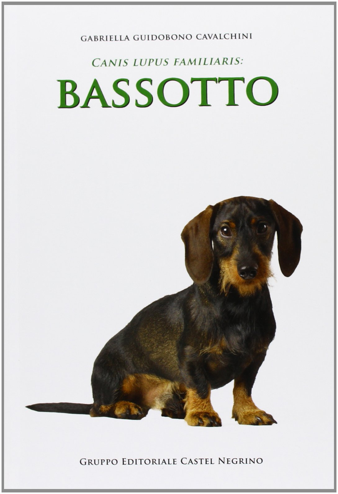 Download Bassotto 