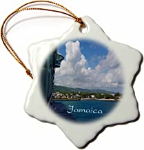 """3dRose View of Jamaica Shoreline from Cruise Ship Snowflake Ornament, 3"""""""