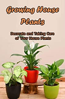 Growing House Plants: Decorate and Taking Care of Your House Plants: Taking Care Indoor Plants