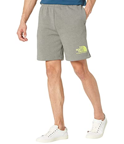 The North Face Coordinates Shorts