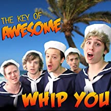 Whip You (Parody of One Direction's