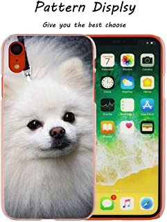 Cute Pomeranian Dogs Transparent Hard Phone Cover Case for iPhone X Xs Max Xr 8 7 6 6S Plus 5 Se 5C 4 4S,002,for iPhone 7 Plus