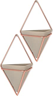 Umbra 470753-633 Trigg Hanging Planter Vase & Geometric Wall Decor Containers-for Succulents, Air, Mini Cactus, Faux Plant...