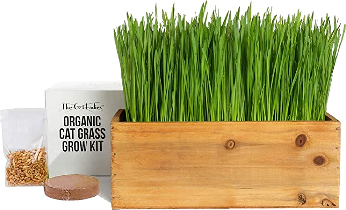 Cat Grass Kit (Organic) Complete with Rustic Wood Planter, Seed and Soil. Easy to Grow - Great for Indoor or Outdoor Cat, Dogs and Other Pets. Prevent Hairballs and Aid Digestion…