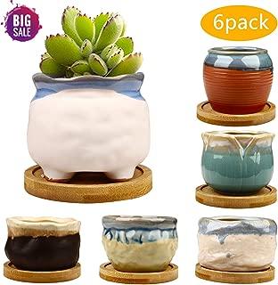 2.95 inch Succulent Pots,Mini Flower Pots with Drinage,Succulent Planters with Hole,Small Planter Pots,Ceramic Pots for Garden,Cactu,Colourful Glaze Base Serial