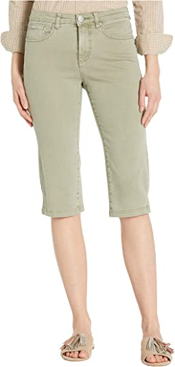 Solid Cool Twill Olivia Pedal Pusher in Willow