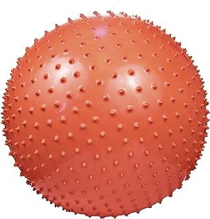 Goda Anti-Burst Inflatable Massage Yoga Exercise Ball
