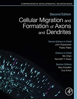 Cellular Migration and Formation of Axons and Dendrites: Comprehensive Developmental Neuroscience