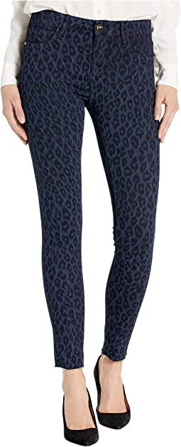 Indigo Leopard