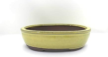 """Bonsai Tree Pot 10"""" (Canary Yellow)"""