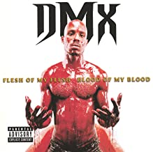 Best dmx we don t give a fuck Reviews