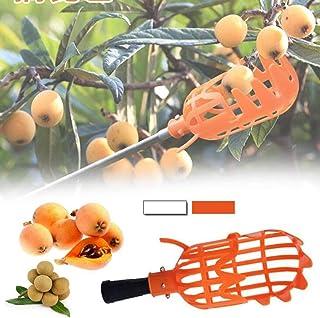 ポールなしの屋外1個プラスチックフルーツピッカープラスチックフルーツ狩りツールフルーツキャッチャーコレクターガーデニングピッキングツールガーデンファームツールバスケットポールスティックキャッチャー