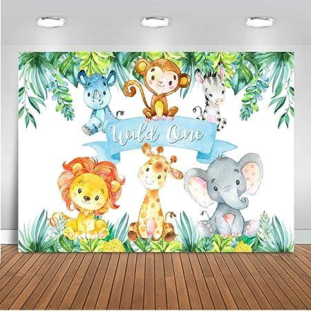 Daniu Lion King Baby Simba Background Jungle Safari Camera Photo