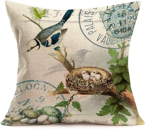Asminifor Vintage Birds Throw Pillow Covers Cotton Linen Retro Bird Nest Eggs Square Decorative Pillowcase Cushion Case For Home Sofa Couch 18 X18 Inches ABN02